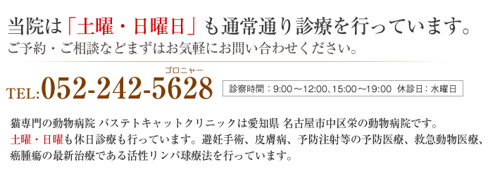バステトキャットクリニックは愛知県 海部郡 大治町にある動物病院です。 土曜・日曜も休日診療も行っています。避妊手術、外科手術、各種検査、入院治療、皮膚病、 フィラリア予防、予防注射、ペットホテルなど行っています。TEL:0120-060-712