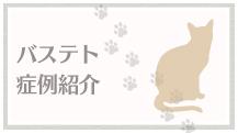 カッサフォルテ犬猫症例紹介