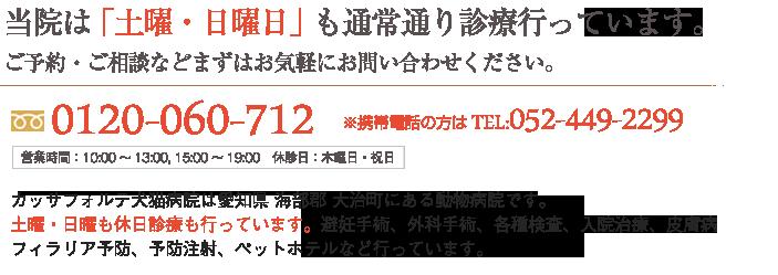 カッサフォルテ犬猫病院は愛知県 海部郡 大治町にある動物病院です。 土曜・日曜も休日診療も行っています。避妊手術、外科手術、各種検査、入院治療、皮膚病、 フィラリア予防、予防注射、ペットホテルなど行っています。TEL:0120-060-712