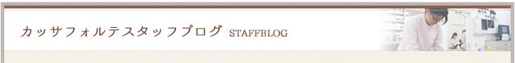 こざわ犬猫スタッフブログ STAFF BLOG